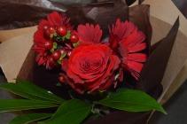Senior roses